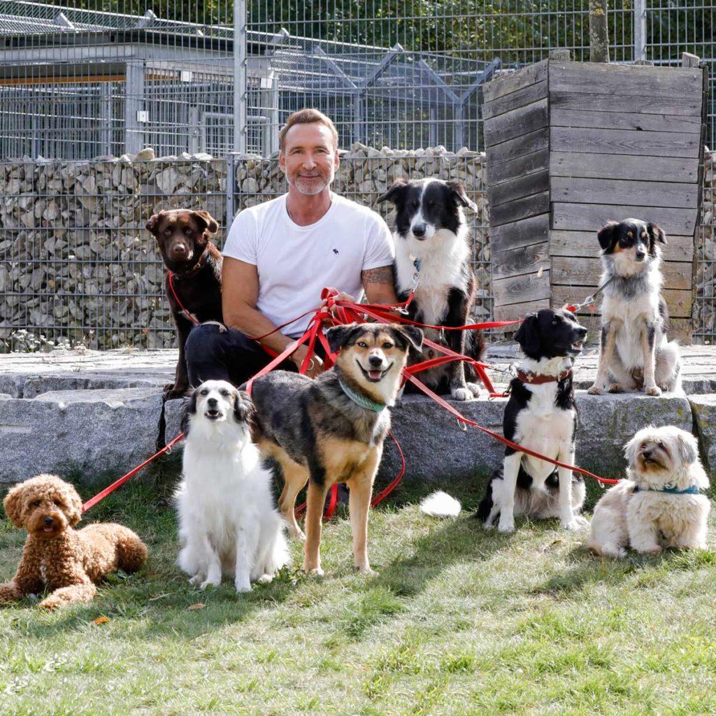 Purina Hundeadoptions-Kampagne